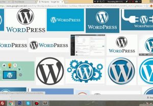 I will Build a Website Using WordPress For Your Business,Product,Brand etc.