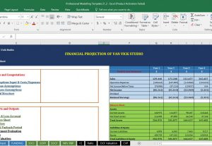 I will offer you Financial Forecasting and Business Valuation Service